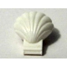 Part 30218 White Clam Type 1 Continuous Scalloped with Trans-Yellow Inner Lip